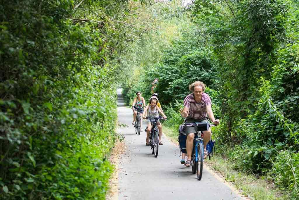 Medzi mestečkami sa môžu ľudia presúvať na bicykli, spájajú ich cyklotrasy. Tie vedú aj okolo celého Balatonu.