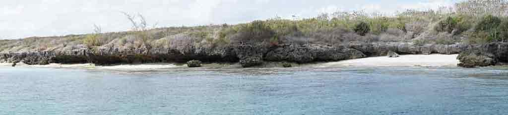 Divoké pobrežie Zanzibaru. Hotely nie sú pri všetkých plážach, mnohé vyzerajú takto.