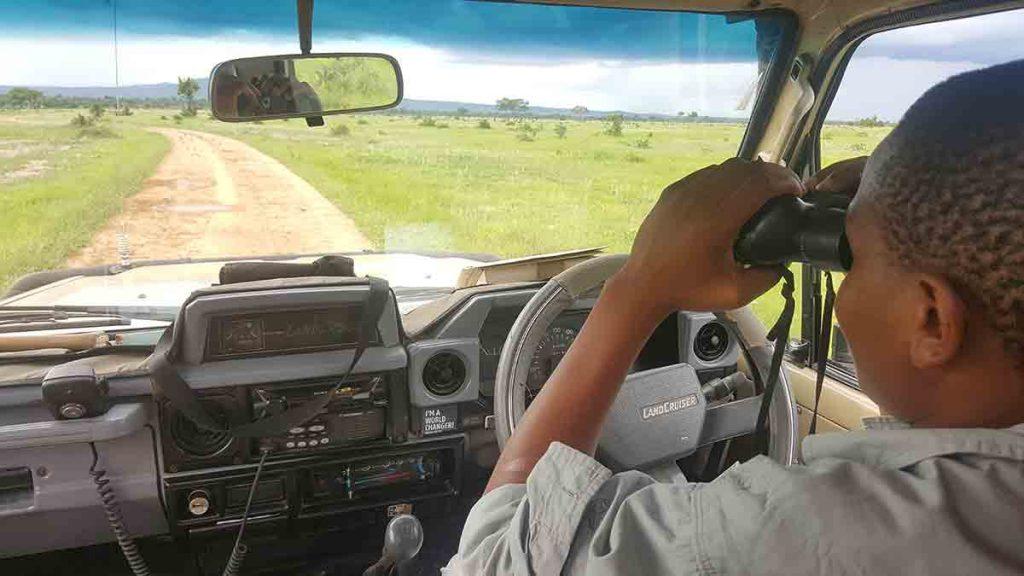 Náš sprievodca Joseph Tarimo sleduje čriedu vtákov na ceste.